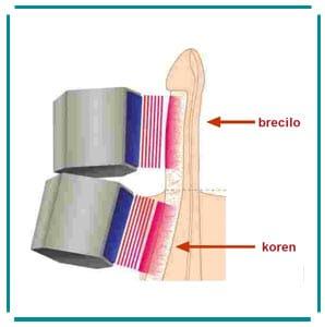 Slika za Informacije